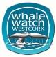 whalewatchlogo 3