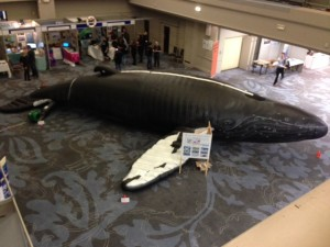 Inflatable humpback used in schools
