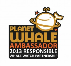 WWWC Ambassador company for responsible whalewatching