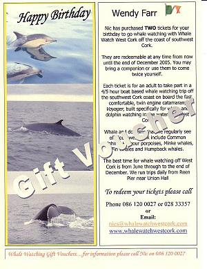 whale watching gift